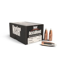 NOSLER .375 260 GR PARTITION