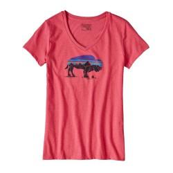 Patagonia tshirt v-neck...