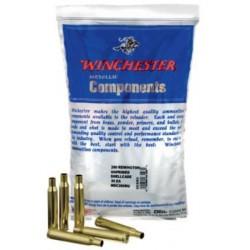Winchester Shellcase 300 WSM