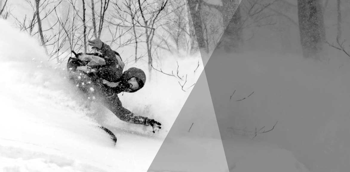 Snowboards - Sporteque
